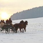 Ab in den Sonnenuntergang - © OÖ Tourismus/Erber