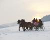 Winterliche Kutschenfahrt - © OÖ Tourismus/Erber