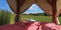 Kräuter-Bett im Kornfeld